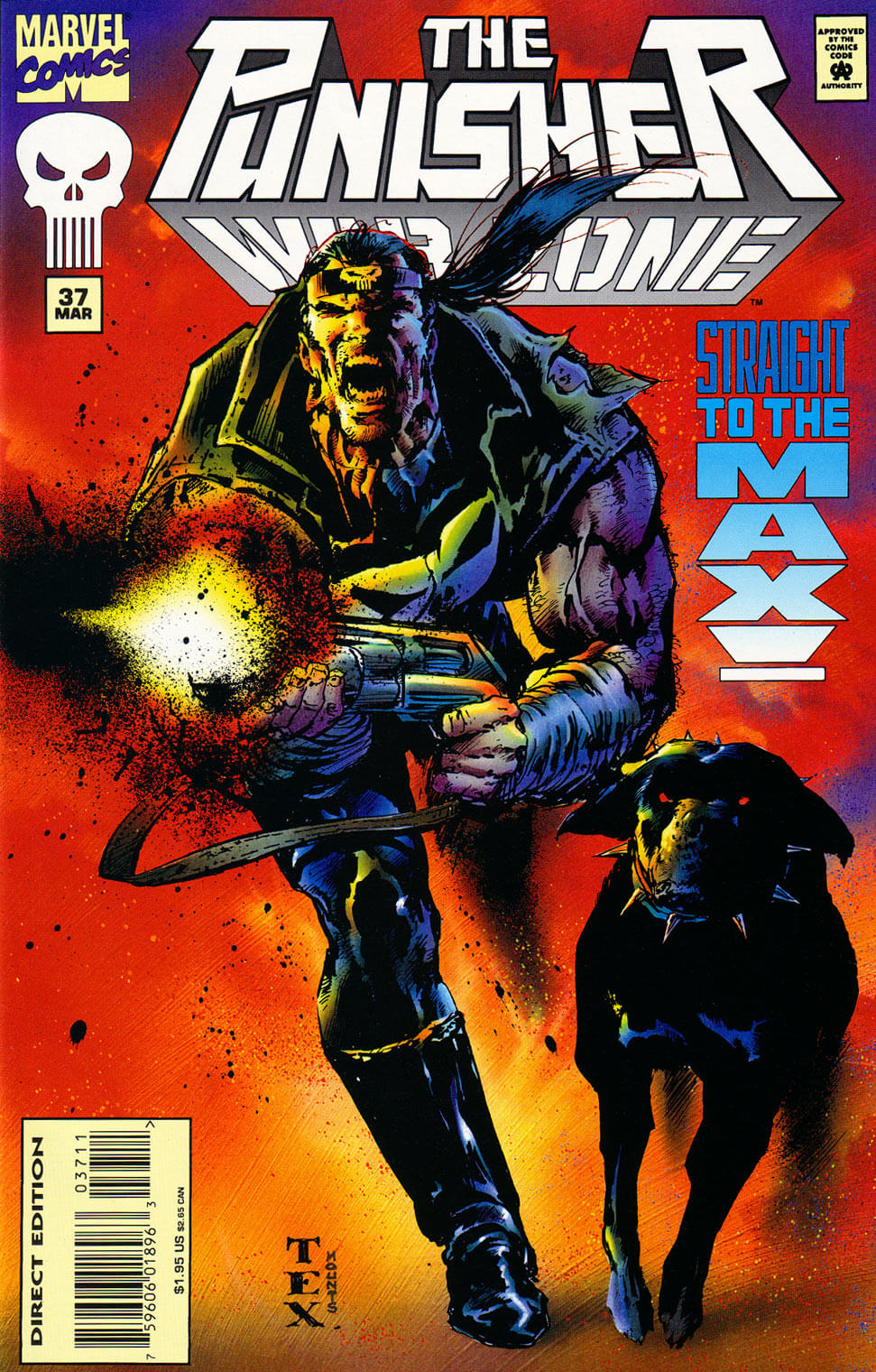 Punisher War Zone #37