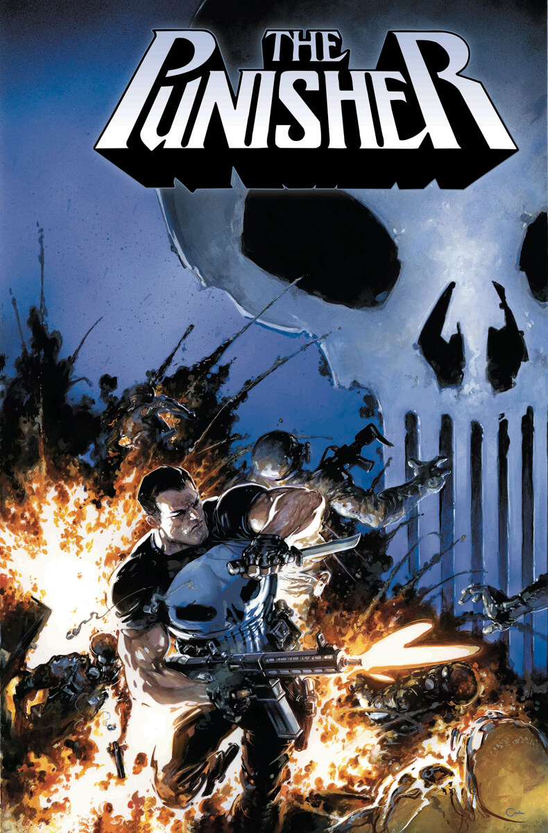 Punisher Vol 12 #1 b