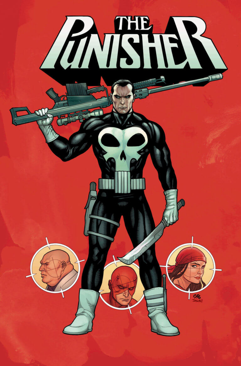 Punisher Vol 12 #1 c
